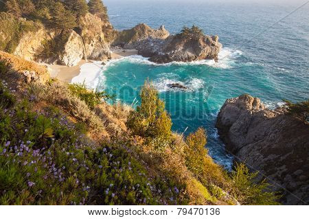 Mcway falls and wild flowers - Pacific coast highway in spring