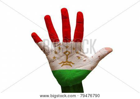 Palm Flag Tajikistan