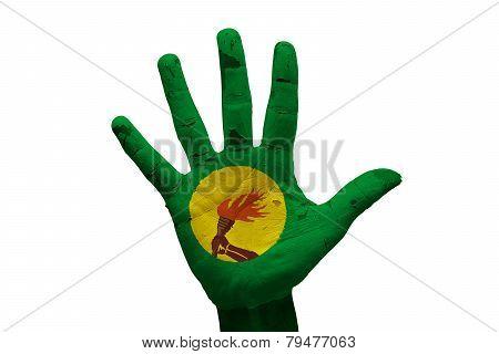 Palm Flag Congo
