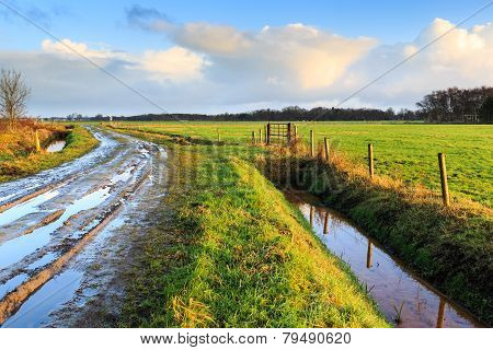 Rural Landscape With Wet Road And Grassland