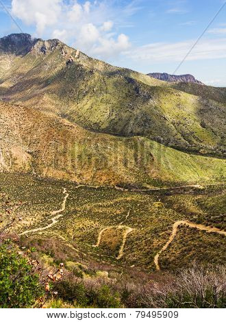 Paths On Huachuca Mountains