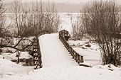 picture of battlefield  - A sepia toned Winter scene at Monmouth Battlefield State Park in New Jersey - JPG
