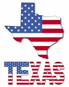 pic of texas map  - Texas map flag and text illustration - JPG