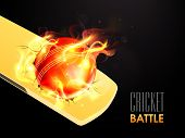 stock photo of cricket bat  - Hot red ball in flame on shiny bat for Cricket Battle - JPG