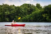 stock photo of bluegrass  - Woman is kayaking on a small lake in Central Kentucky - JPG