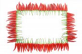 foto of red hot chilli peppers  - Red hot chili pepper border frame isolated - JPG