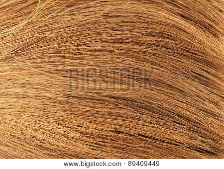 Broom background