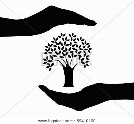 Tree in hands silhouette