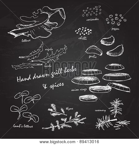 Grill Herbs & Spices On Chalkboard
