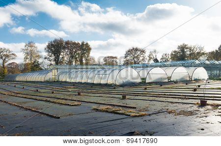 Plastic Greenhouses
