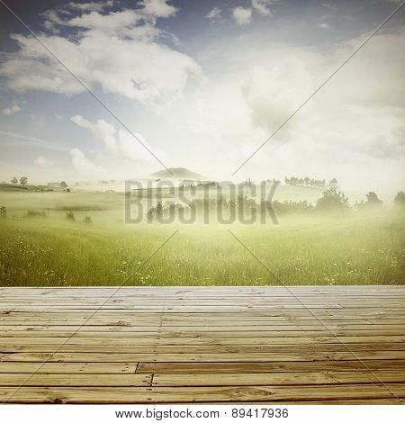 Boardwalk and misty spring scene