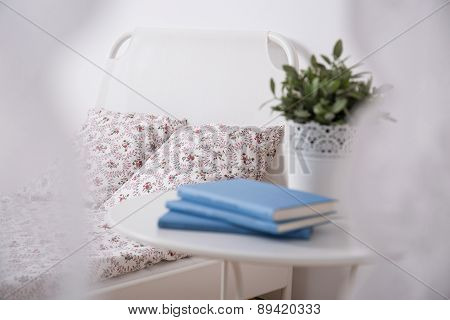 Cozy Bedroom For Teenage Girl