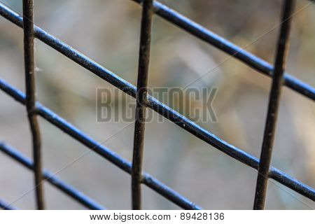 Abstract Photo Of Prison Bars