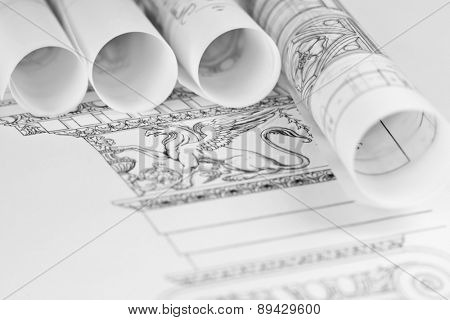 rolls of architecture blueprints & details Ionic architectural order