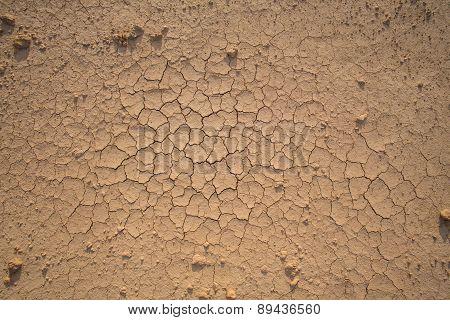 Soil Ground