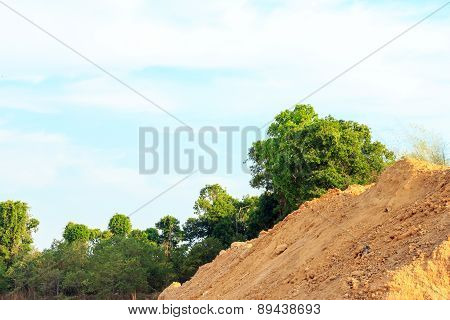 Mound For Construction On The Field Of Forest.
