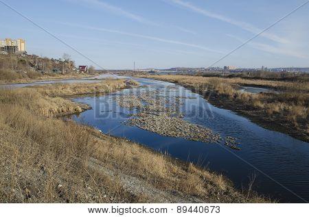 Spring  Angara backwater near the shore