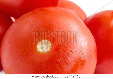 Tomatoes On A White Background.