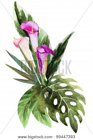 Tropical watercolor flowers