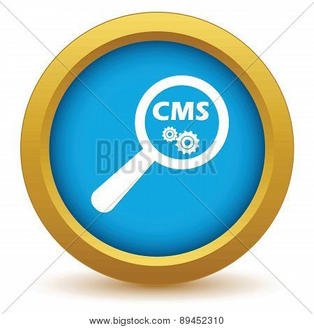 CMS under loupe icon