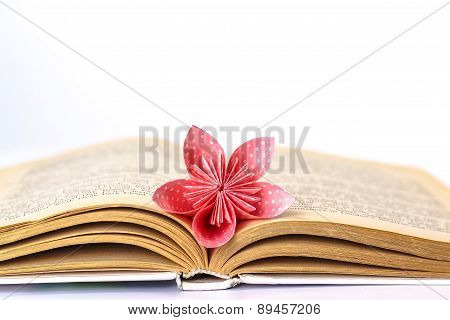 Open book with paper flower isolated on white background