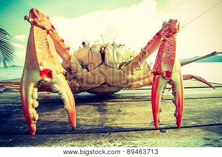 Close Up Of Sea Crab On The Table Near The Sea
