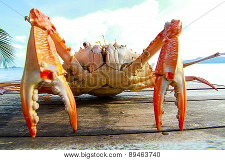 Sea Crab On The Table Near The Sea