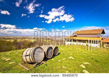 Vineyard Hill Landscape And Wine Barrels