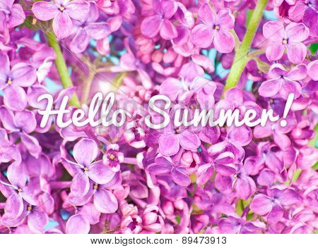 Purple flowers close up,on blue background with text: Hello Summer!