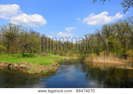 spring landscape win river in forest