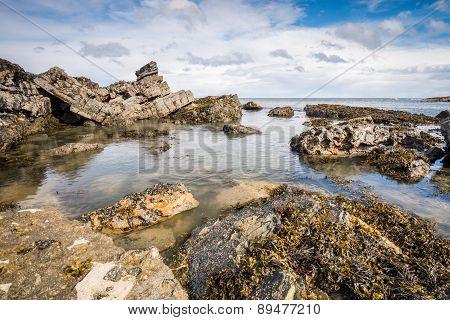 Rocks At Howick