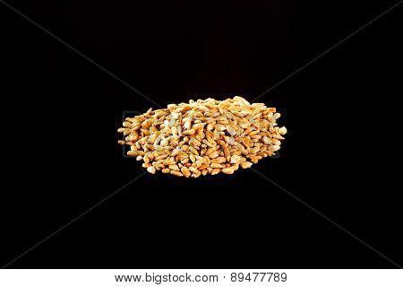 Roasted Salted Sunflower Seeds