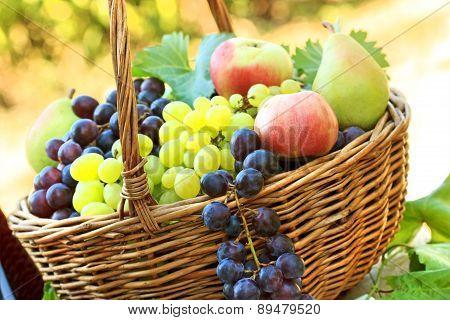 Fresh organic autumn fruits