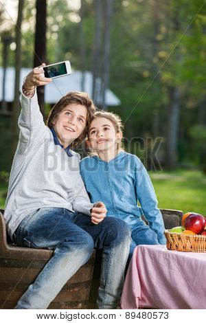 Happy siblings taking selfportrait through smartphone at campsite