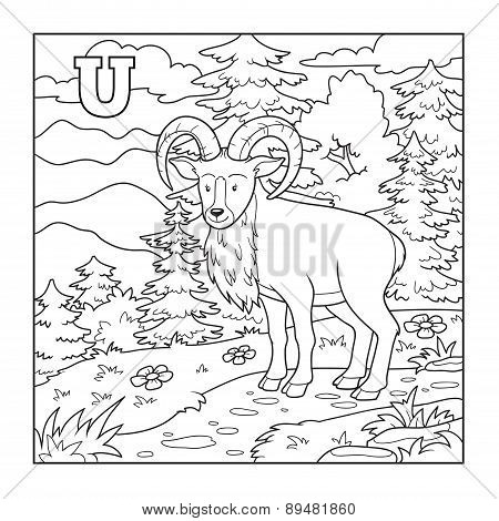 Coloring Book (urial), Colorless Illustration (letter U)