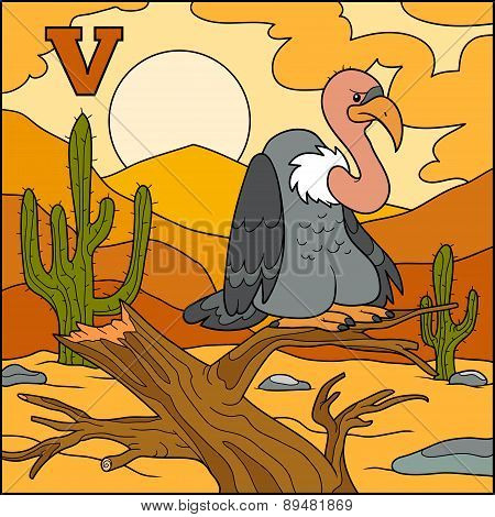 Color Alphabet For Children: Letter V (vulture)