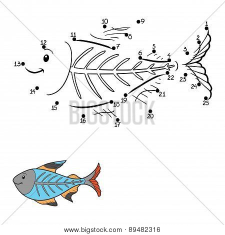 Numbers Game (x-ray Fish)