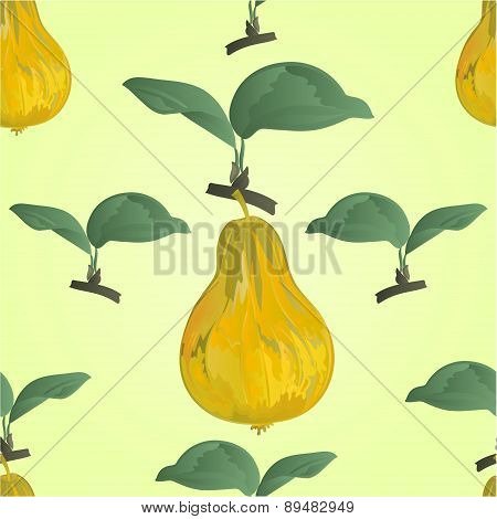 Seamless Texture Of  Green Pear With Green Leaves Vector