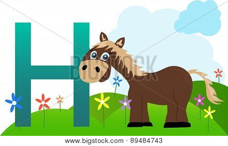 Horse with the letter h
