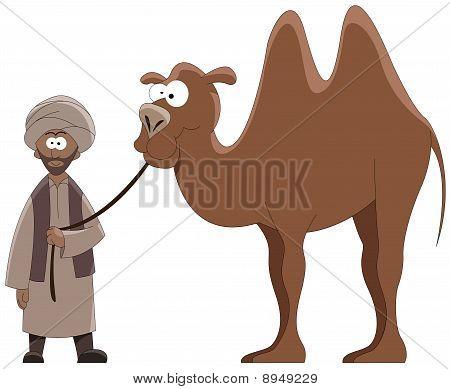 Conductor y camel