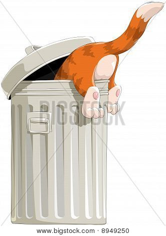 The cat in garbage bin