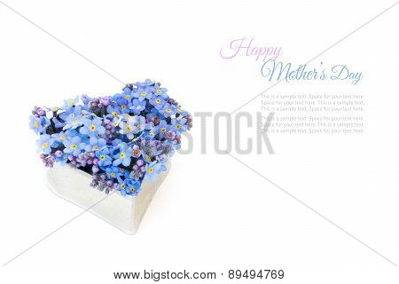 Forget-me-not Flowers In A Silver Heart Shape Isolated, Sample Text Happy Mothers Day