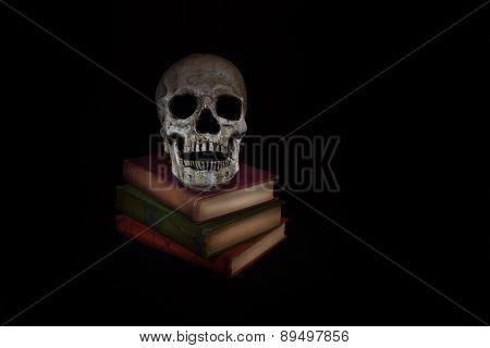 Vintage Skull With Novels