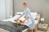 pic of maids  - Young Maid Keeping Breakfast Tray In Hotel Room - JPG