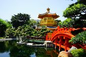 image of hong kong bridge  - Public Nan Lian Garden with Chi Lin Nunnery - JPG