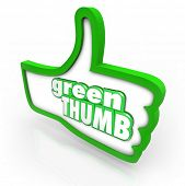 pic of cultivation  - Green Thumb words in a thumbs up symbol to illustrate the hobby or profession of gardening - JPG