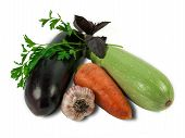 picture of brinjal  - Eggplant carrot vegetable marrow garlic and branch of parsley and basil on a light background - JPG