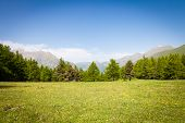 image of italian alps  - Wonderful view on Italian Alps with a forest background during a summer day - JPG
