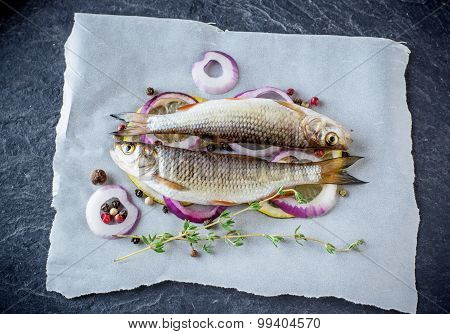 Two little fresh river fish on a sheet of parchment