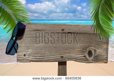 Wooden Signboard Under Palm Fronds